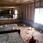5 common brooder house mistakes – hobby farms