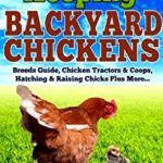A beginner's help guide to backyard chickens