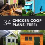 Add home windows for your chicken house for air conditioning – hobby farms