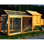 Backyard chicken coops strut their stuff