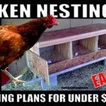 Building a chicken nesting box