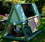 Chicken house building guides and plans