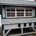 Chicken house home windows, shed home windows