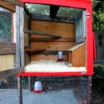 Chicken tractor 101: what it's & the fundamentals of creating one – modern player