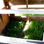 Creating a chicken house –