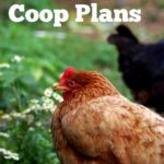 Diy chicken house plans – the cape coop