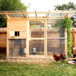 How to pick the best coop for chicken housing – dummies
