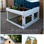 New diy chicken house – invironment – medium