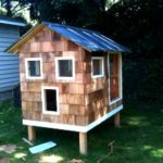 The main one where i built a chicken house – trevormade