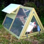 The way to select the best chicken house
