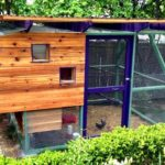 Virtual chicken house tour: krewe of coops #4 ::: coop ideas blog