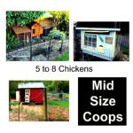 What sort of chicken house design is better? – timber creek farm