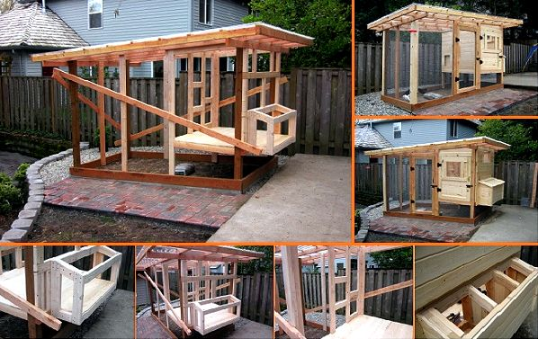 10+ diy backyard chicken house plans and tutorial Do as instructed carefully,  and