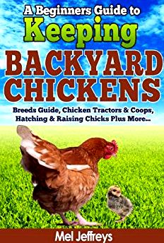 A beginner's help guide to backyard chickens day trip of