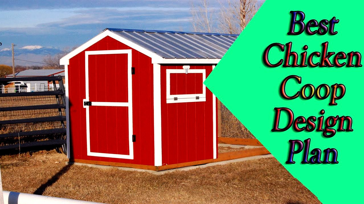 5 diy chicken house designs will not make you broke! tight budget