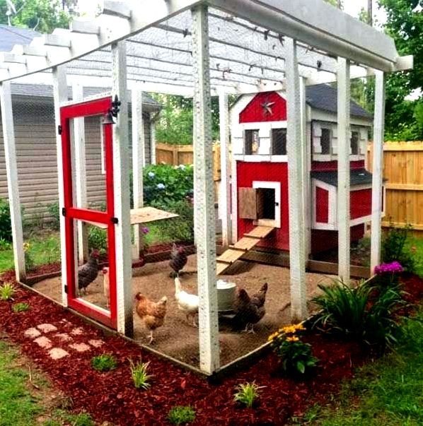 Backyard chicken house designs - how can you choose? become portable in order