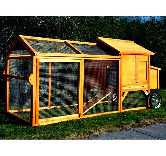 Backyard chicken coops strut their stuff of us,Inches stated Neil