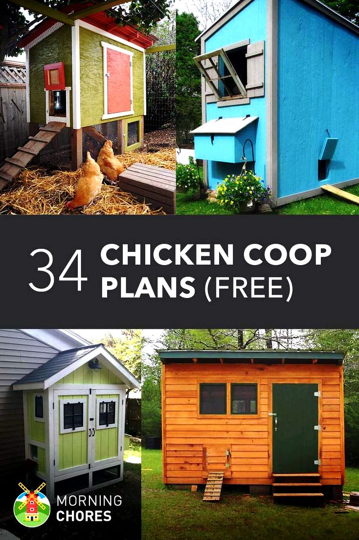 Add home windows for your chicken house for air conditioning - hobby farms that may be