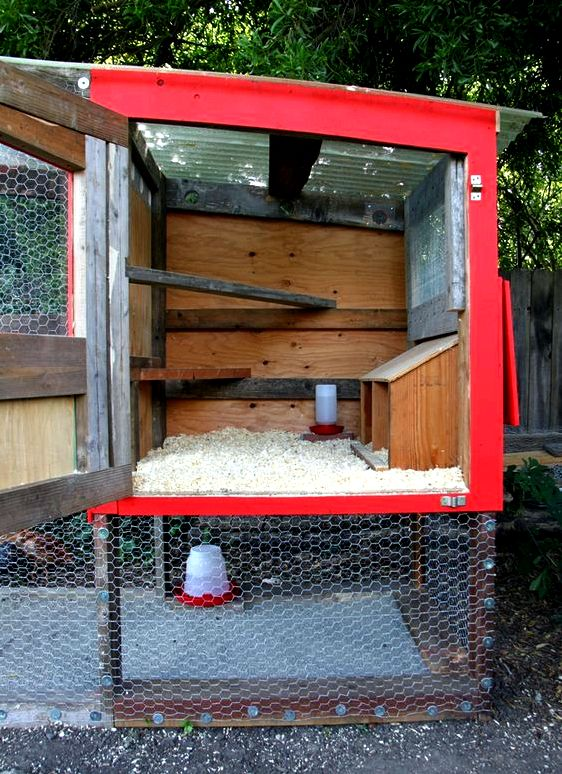 Chicken tractor 101: what it's & the fundamentals of creating one - modern player Plan not less than