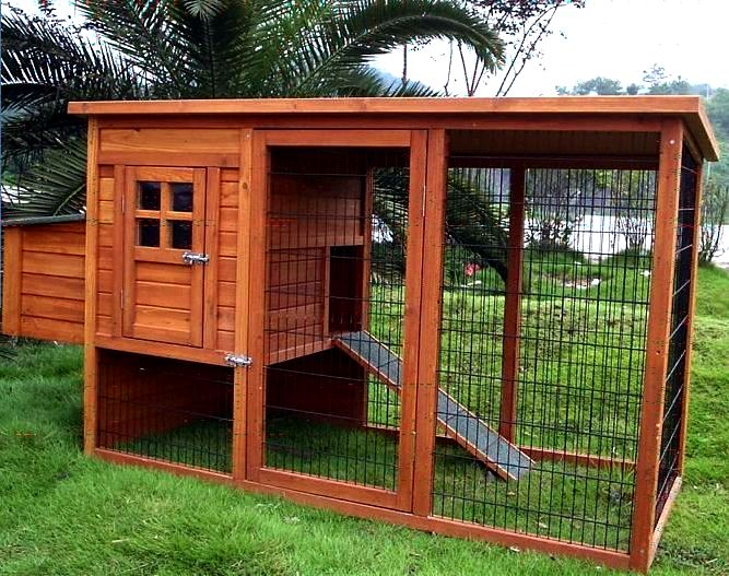 Building an outdoor chicken house You may also