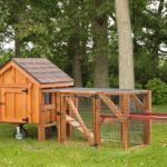 4 Chicken Coop Ideas You Should Not Miss