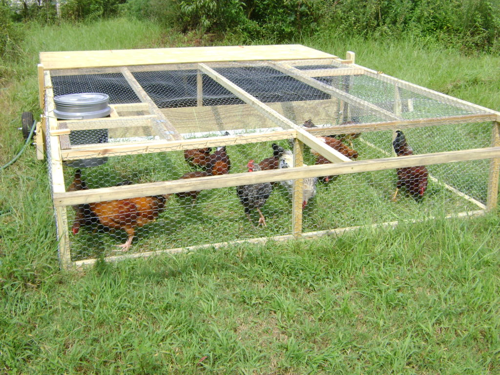chicken coop pen