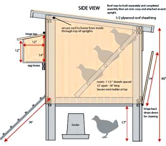 Chicken house plans Our large backyard chicken house