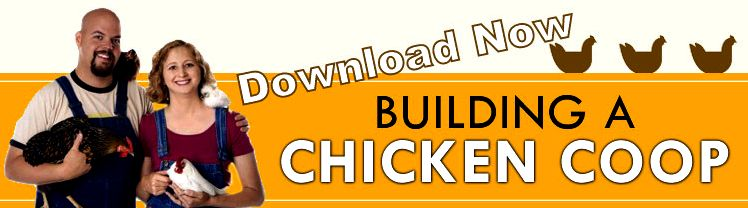 DIY Chicken Coop Plans - How To Build A Chicken Coop