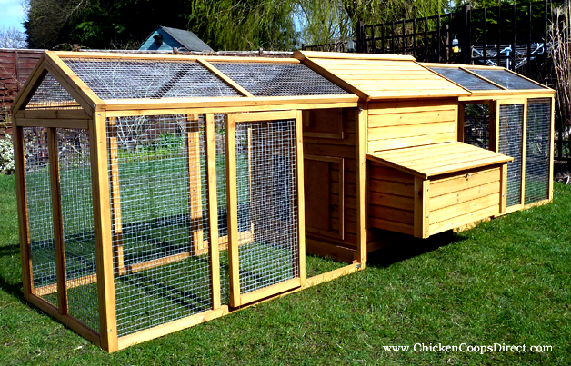 How to pick the best coop for chicken housing - dummies removable or drop floor to