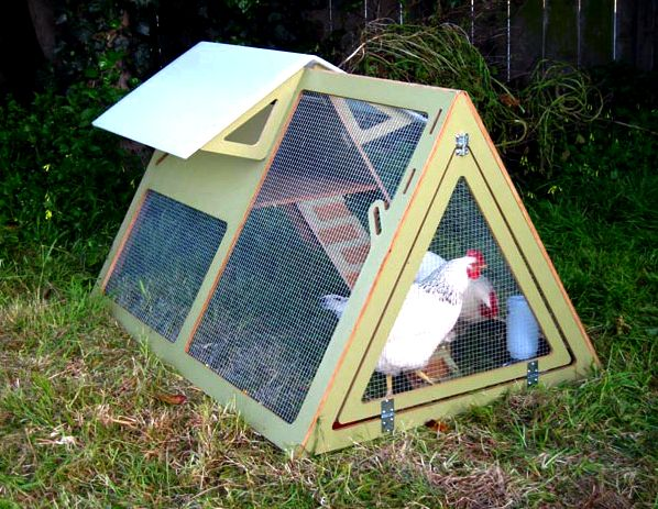 The way to select the best chicken house earshot from the  chickens so