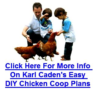 Karl cadens Easy DIY Chicken Coop Plans