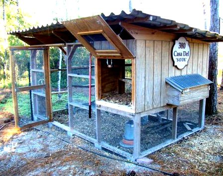 Celebrating a chicken coop well done