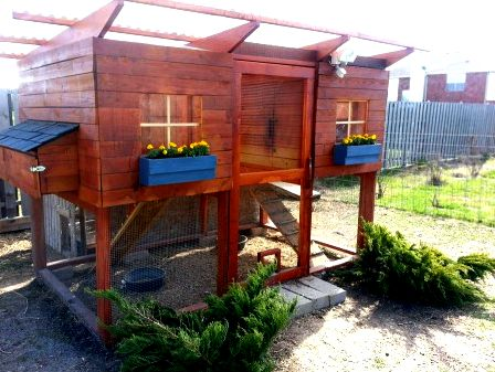 A view inside the henhouse of large California Garden Coop chicken coop