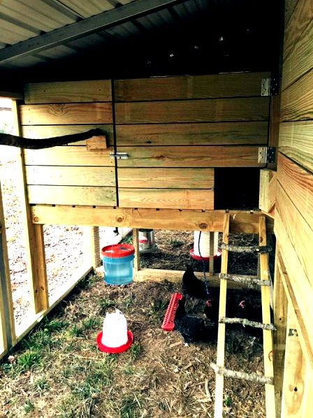 Cole built a very large chicken coop using The Garden Coop plans
