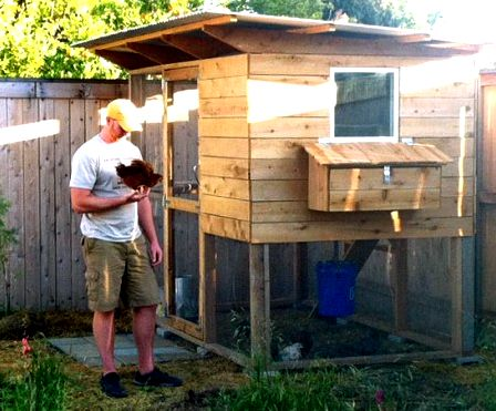 Tall chicken coop from plans